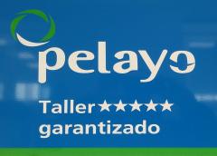 pelayo_taller_garantizado.png